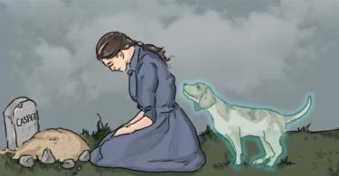 Η απώλεια ενός PET είναι πιο βλαπτικό από ό, τι οι περισσότεροι άνθρωποι να εκτιμήσουν